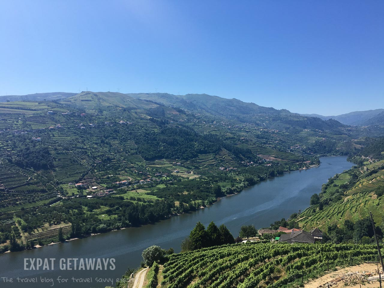 With scenery like this it is hard not to fall in love with the Douro Valley, Portugal. The amazing port is an added bonus!
