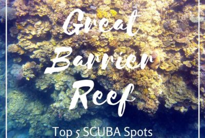 Top scuba spots on the Great Barrier Reef