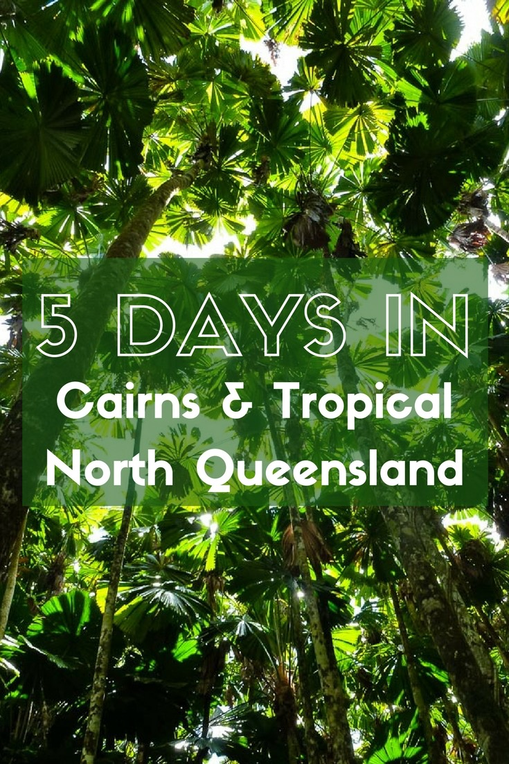 5 days in cairns and tropical north queensland with expat getaways