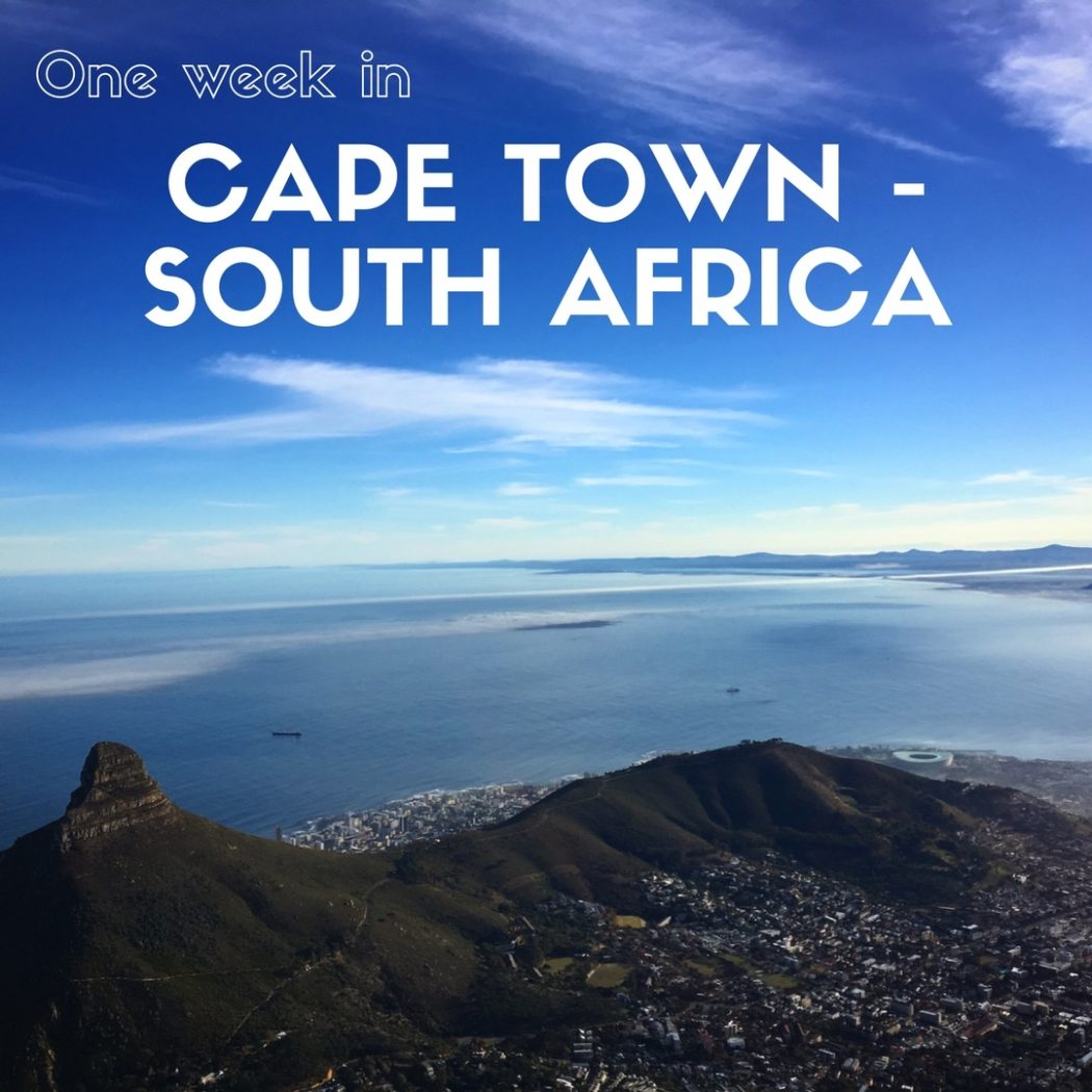 Everything you need to include in the ultimate one week itinerary for Cape Town, South Africa. Culture, food, wine, wildlife and stunning coastal scenery. Expat Getaways One Week in Cape Town, South Africa.