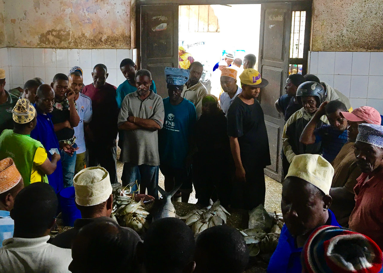 If you want to understand local life head straight to the market. This fish auction was a sight to behold! Expat Getaways - One Day in Stone Town, Zanzibar, Tanzania.
