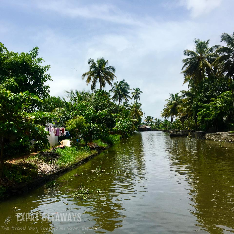 Many canals and interconnected lakes make up the Kerala Backwaters near Alleppey. Expat Getaways - One Week in Kerala, India.