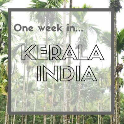 One Week in Kerala - India